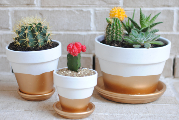 gold painted planters