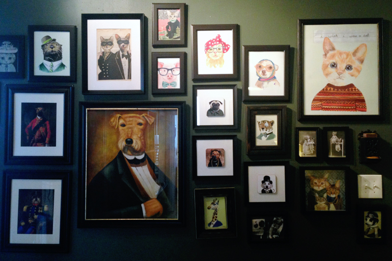 Cat gallery wall